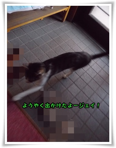 IMGP1502.jpg