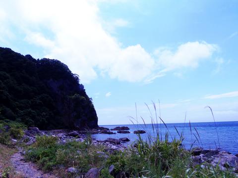 summer_004.jpg