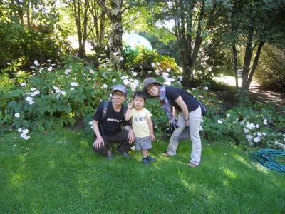 Goto family
