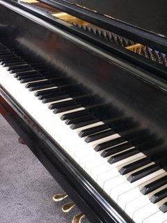 G.Piano-keys-Nov