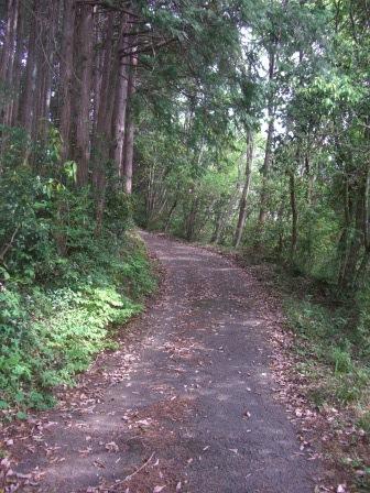 長篠ツアー 鳶ヶ巣山への道