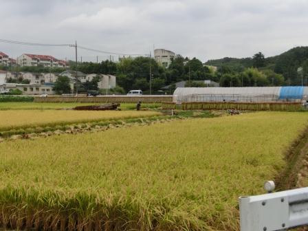 2012 秋の寺家町①
