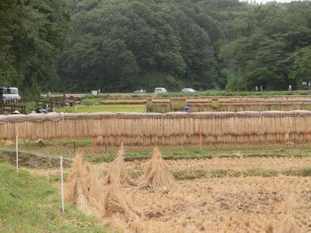 2012 秋の寺家町③