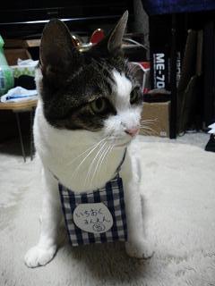 リアル招き猫2
