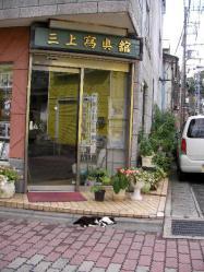 三崎商店街