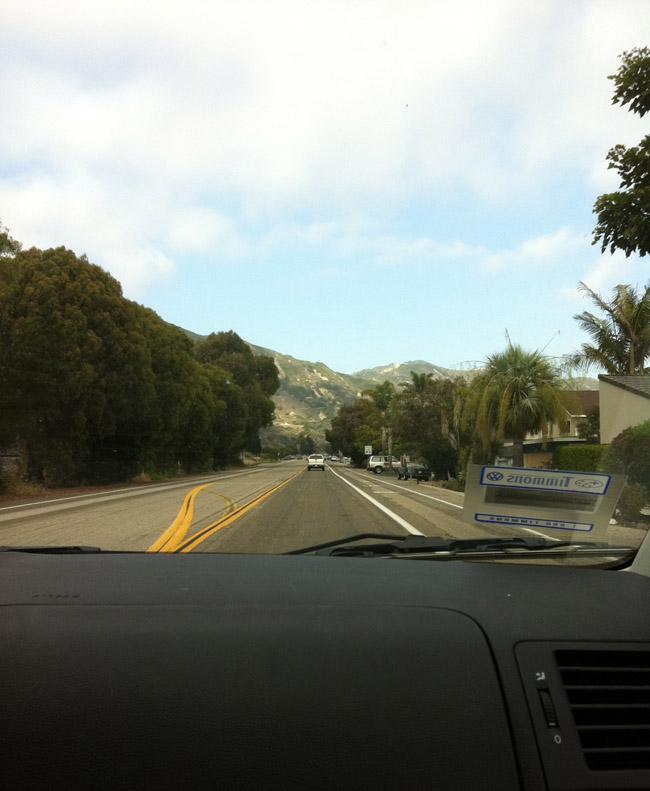 driving like drank doggie