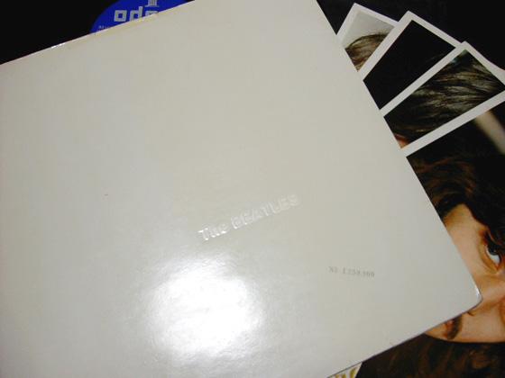 whiteFR (8)