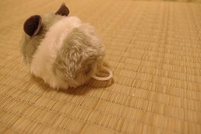 ただのネズミじゃないのだ
