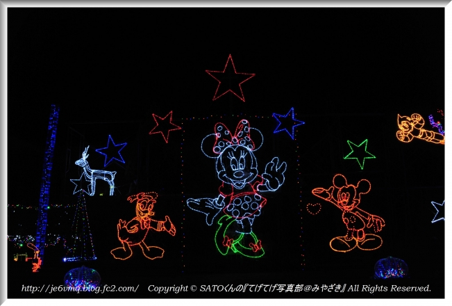 DSC_4606-1.jpg