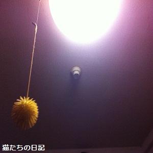 001_20120603234535.jpg