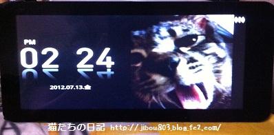 005_20120713143320.jpg