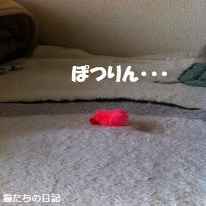 とんぼちゃん