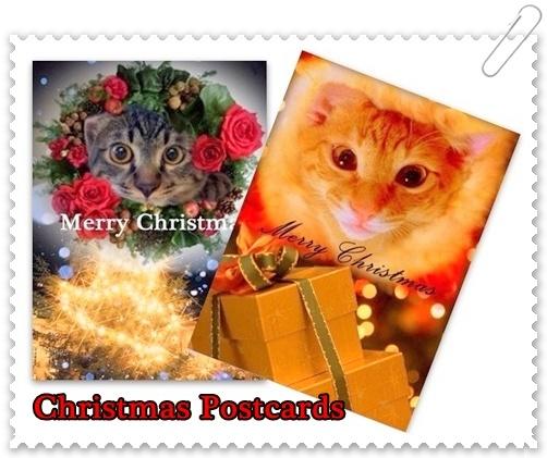 クリスマスに 大切な人に届けてくださいね♪