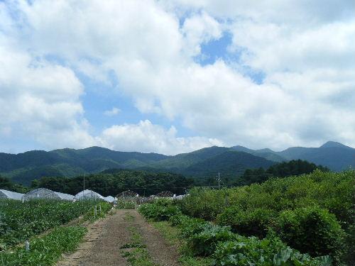 2012_0805爆水ラン0025
