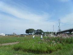 2012_0923PARACUP仙台0010