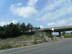 2012_0923PARACUP仙台0016