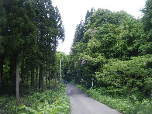 2012_0611iwateginga0178.jpg