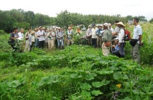三井和夫さんの自然農園