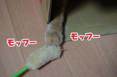 20120604e.jpg