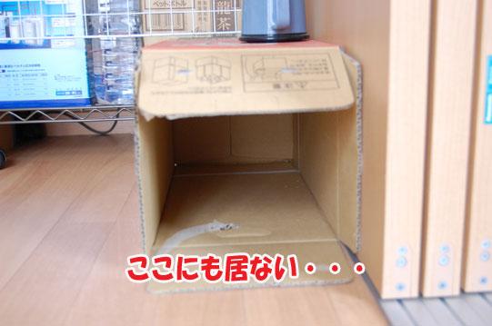 20120710f.jpg