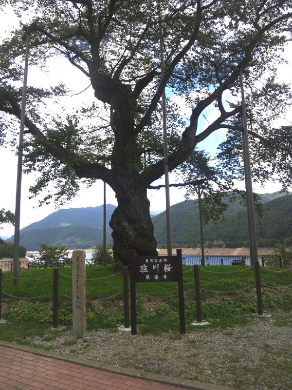 20120915-12.jpg