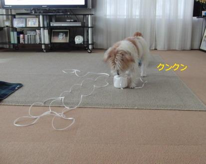 紐で遊んじゃおう!