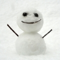 20130114_snow_0274_w800.jpg