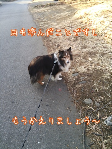 2014-01-29-21-40-09_deco.jpg