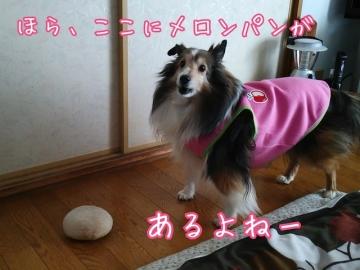 2014-01-29-21-43-33_deco.jpg