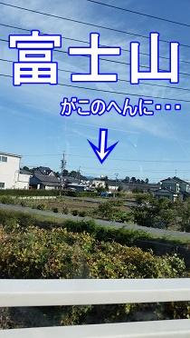 富士山もどき