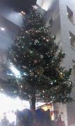 クリスマスツリー・リバ
