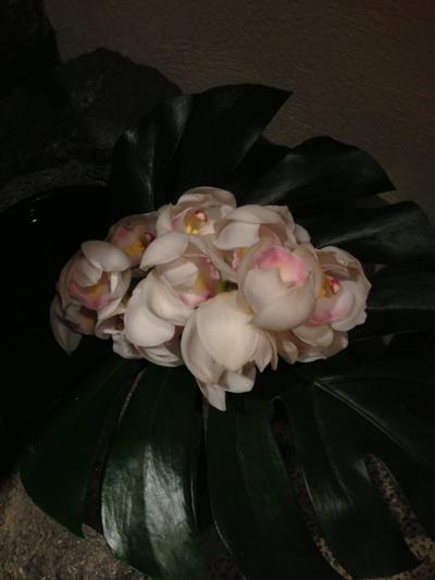 fc2blog_2012122718525062d.jpg