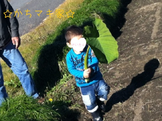 IMG_6715.jpg