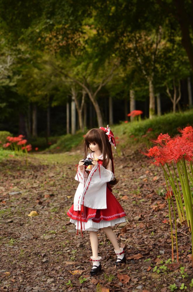 DSC_0055_20121007141954.jpg