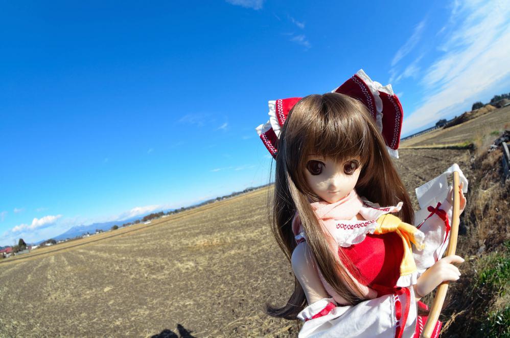 DSC_0068aa.jpg