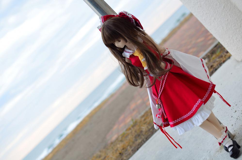 DSC_0073_20121225211946.jpg