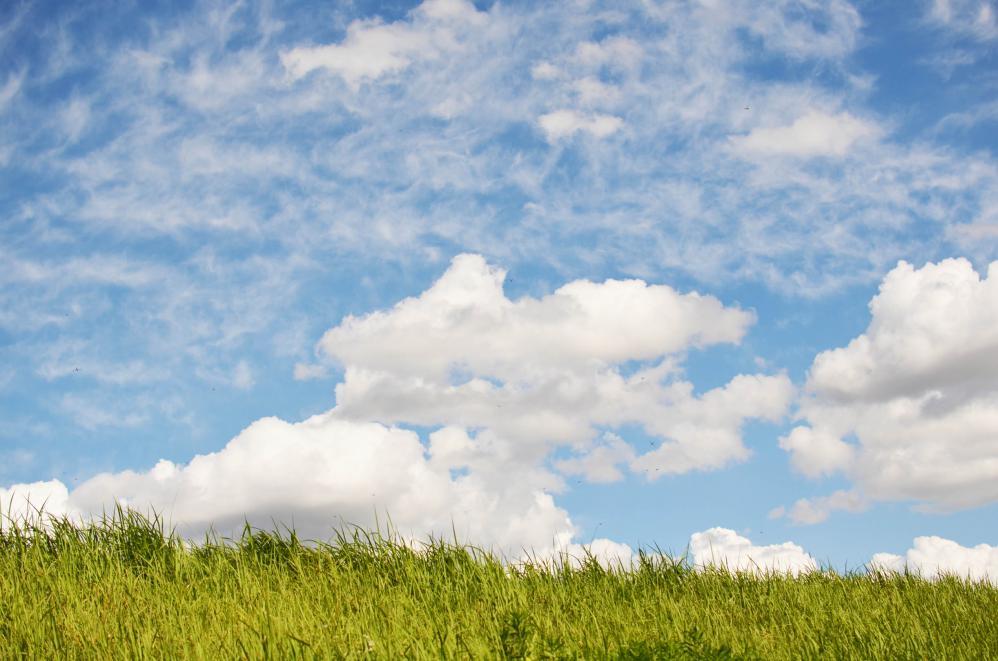 DSC_0103_20121001201907.jpg