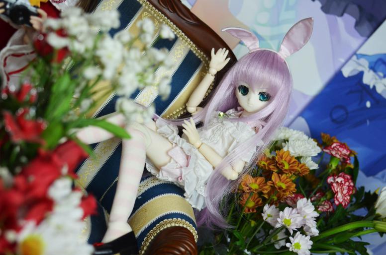 DSC_0114_20120913212420.jpg