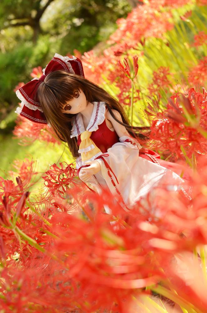 DSC_0120_20121001202124.jpg