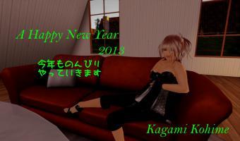 2013_SL.jpg