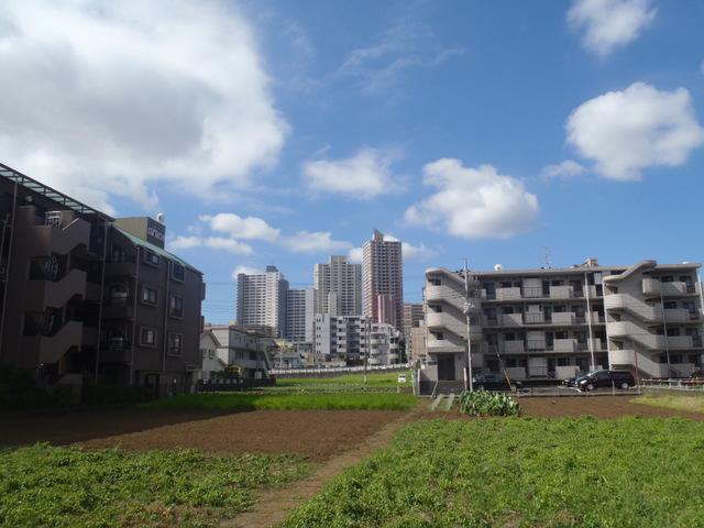 自宅~津久井湖~高尾H24.8 102
