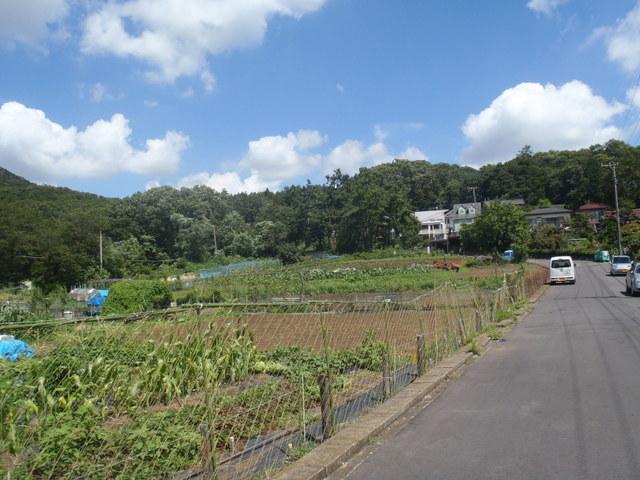 自宅~津久井湖~高尾H24.8 130