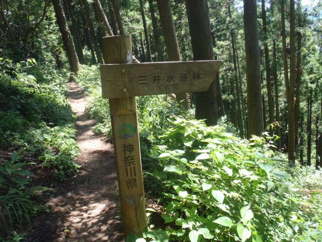 自宅~津久井湖~高尾H24.8 144