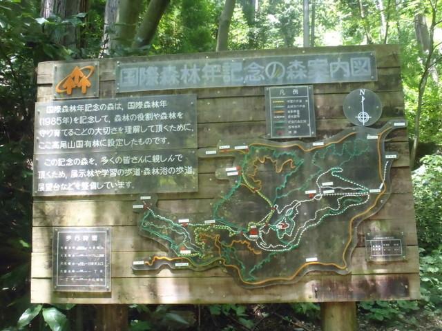 自宅~津久井湖~高尾H24.8 164