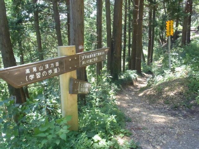 自宅~津久井湖~高尾H24.8 166