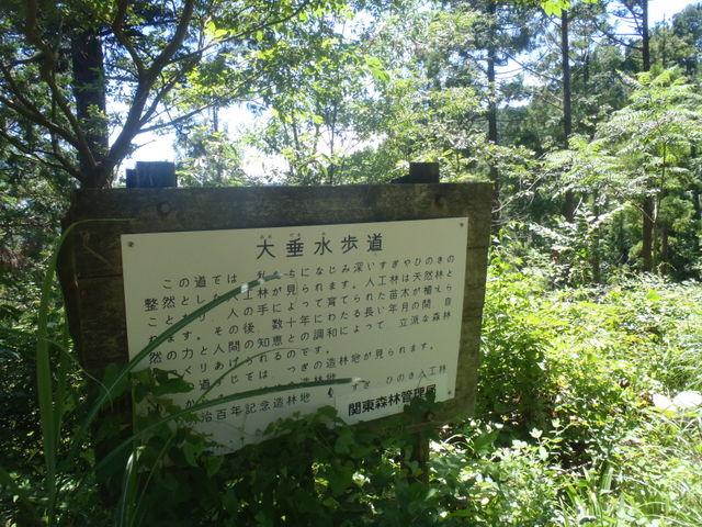 自宅~津久井湖~高尾H24.8 174