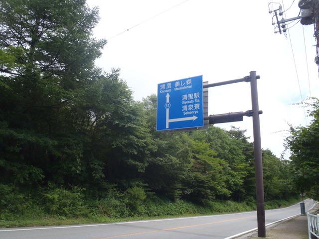 清里~出合小屋~天狗尾根~赤岳~美濃戸H24.8.12 014