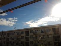 20121127_093207.jpg