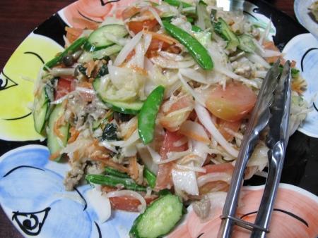 スナップエンドウと新たまねぎ豚肉炒めのサラダ