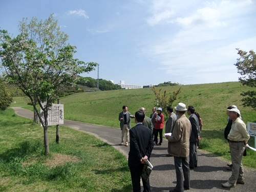 2013.4.26 鎌足桜視察研修(保存会) 064 (2)